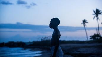 Moonlight (Source: themoviedb.org)