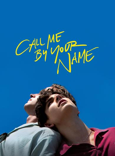 Call Me By Your Name Poster (Source: themoviedb.org)