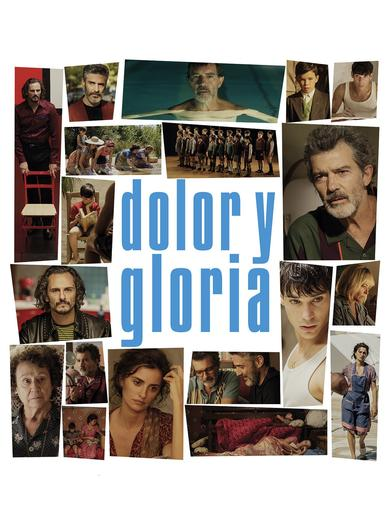 Dolor y gloria Poster (Source: themoviedb.org)