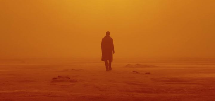 Blade Runner 2049 (Source: themoviedb.org)